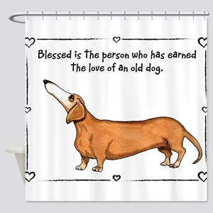 Old dog Love Shower Curtain
